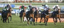 Ayr racing